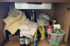 Under Sink Cabinet - Before